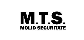 Molid Tehnic Service